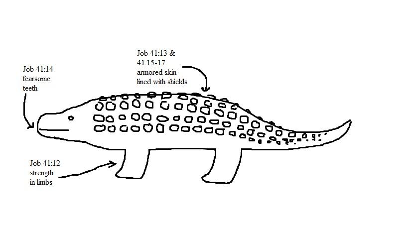 Animal Teeth Drawing d Drawing ii