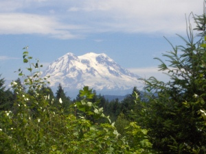 Mt Rainier as seen from near Yelm, Washington