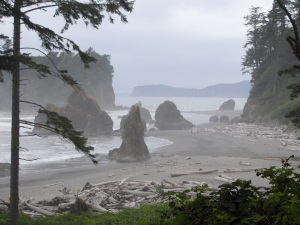 Pacific Ocean off Washington State Coast