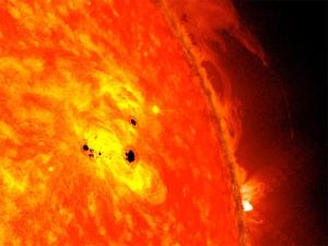Sun Spots and Solar Flares – NASA