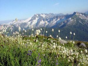 Copper Ridge, North Cascade National Park -National Park Service