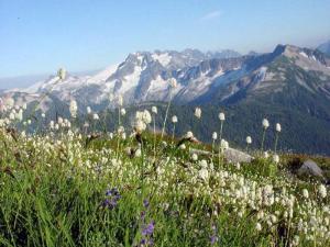 Copper Ridge, North Cascade National Park -National Park Service